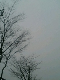 Pa0_0521
